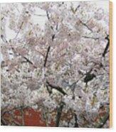 Bricks And Blossoms Wood Print