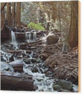 Bridal Veil Falls - British Columbia Wood Print