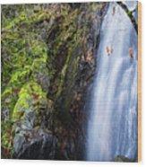 Bridal Veil  Falls 3 Wood Print