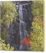 Bridal Veil Falls Black Hills Wood Print