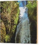 Bridal Veil Falls, Oregon Wood Print