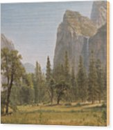 Bridal Veil Falls Yosemite Valley California Wood Print by Albert Bierstadt