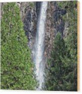 Bridalvail Fall And Raven Wood Print
