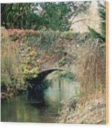 Bridge At Blarney Castle Wood Print