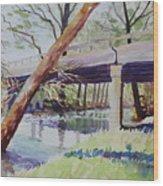 Bridge At Camp Verde Wood Print