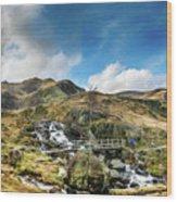 Bridge At Snowdonia Wood Print