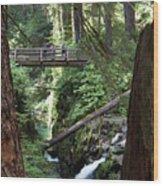 Bridge At Sol Duc Fall #1 Wood Print