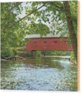 Bridge At The Green Wood Print