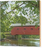 Bridge At The Green - Widescreen Wood Print