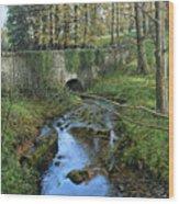 Bridge In Autunm Wood Print
