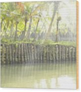 Bridge In Kerela Wood Print
