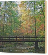 Bridge In The Forest Wood Print