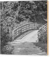 Bridge In The Path I Wood Print