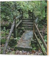 Bridge Of Dreams Wood Print