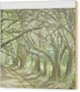 Bridge Of Oaks Wood Print