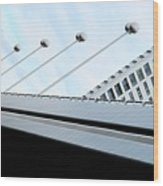 Bridge Over The Danube Wood Print