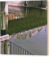 Bridge Over The Grand Wood Print