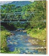 Bridge Over Tropical Dreams Wood Print