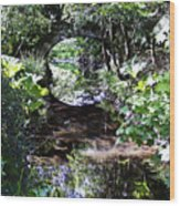 Bridge Reflection At Blarney Caste Ireland Wood Print