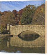 Bridge Reflection Wood Print