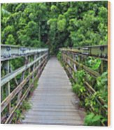 Bridge To Bamboo Forest Wood Print