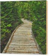 Bridge To Chimney Pond Wood Print