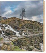 Bridge To Idwal Lake Wood Print