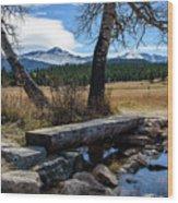 Bridge To Long's Peak Wood Print