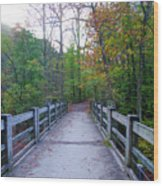 Bridge To Paradise - Wissahickon Valley Wood Print