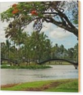 Bridges At Wailoa Wood Print