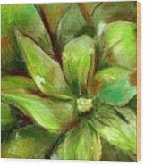 Bright Agave Wood Print