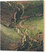 Bright Angel Trail Abstract Wood Print