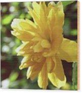 Bright As Yellow Wood Print