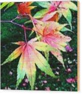 Bright Autumn Leaves Tatton Park Wood Print