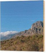 Bright Autumn Panorama Demerji Crimea Peninsula Wood Print