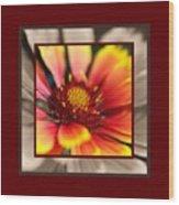 Bright Blanket Flower With Design Wood Print