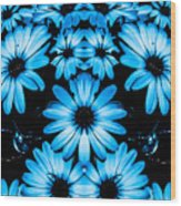 Bright Blue Daisies Wood Print