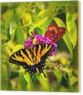 Bright Butterflies Wood Print