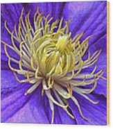 Bright Clematis Center Wood Print