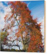 Bright Fall Colors Wood Print