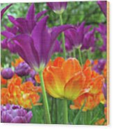 Bright Floral Wood Print