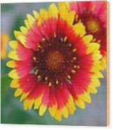 Bright Floral Day Wood Print