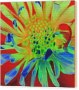 Bright Flower Wood Print