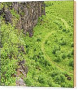 Bright Green Asbyrgi Canyon In Iceland Wood Print