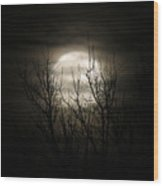 Bright Night Wood Print