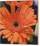 Bright Orange Daisy Wood Print