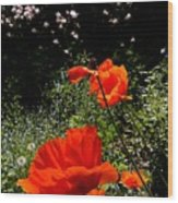 Bright Orange Wood Print