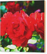 Bright Red Rose Wood Print