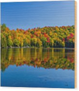 Bright Reflection Wood Print