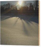 Bright Sun On Fresh Snow Wood Print